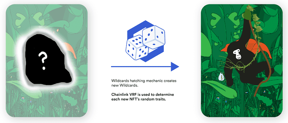 hatch-random-wildcard